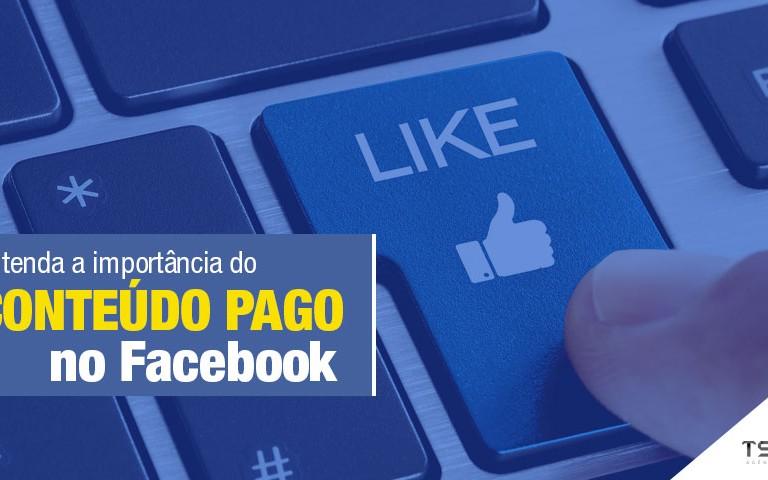 a importância do conteúdo pago no Facebook